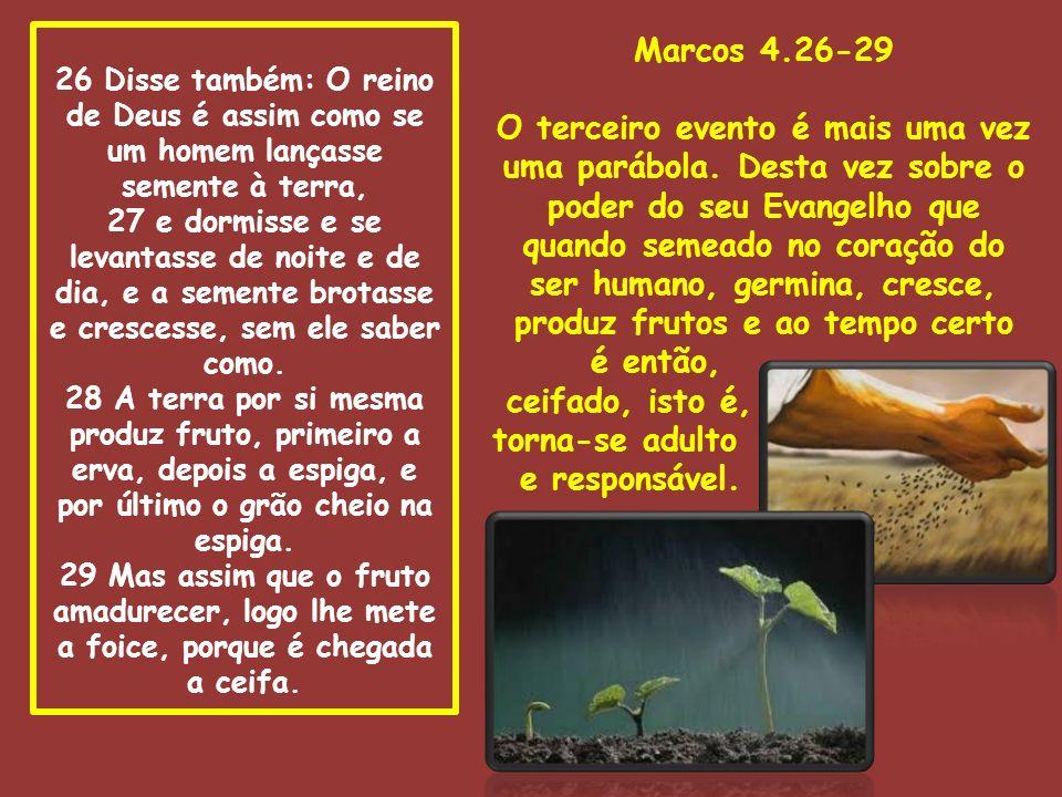 26 Disse também: O reino de Deus é assim como se um homem lançasse semente à terra, 27 e dormisse e se levantasse de noite e de dia, e a semente brota