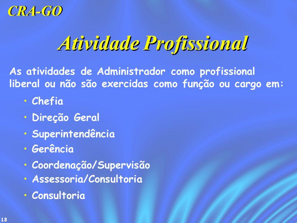 13 Atividade Profissional As atividades de Administrador como profissional liberal ou não são exercidas como função ou cargo em: Chefia Direção Geral