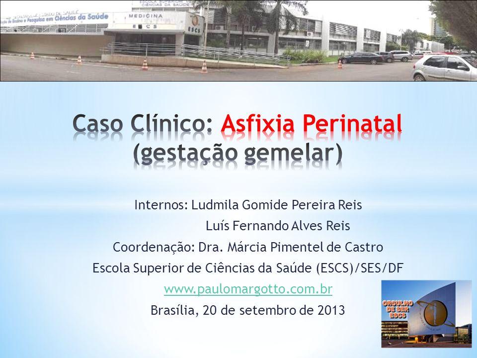 Internos: Ludmila Gomide Pereira Reis Luís Fernando Alves Reis Coordenação: Dra. Márcia Pimentel de Castro Escola Superior de Ciências da Saúde (ESCS)