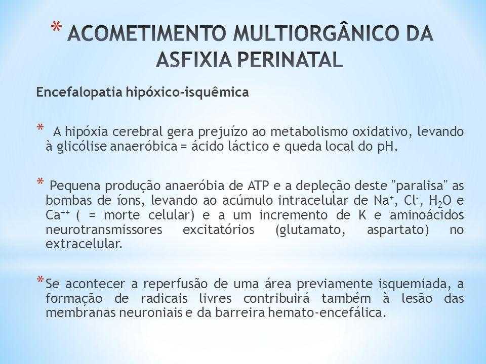Encefalopatia hipóxico-isquêmica * A hipóxia cerebral gera prejuízo ao metabolismo oxidativo, levando à glicólise anaeróbica = ácido láctico e queda l