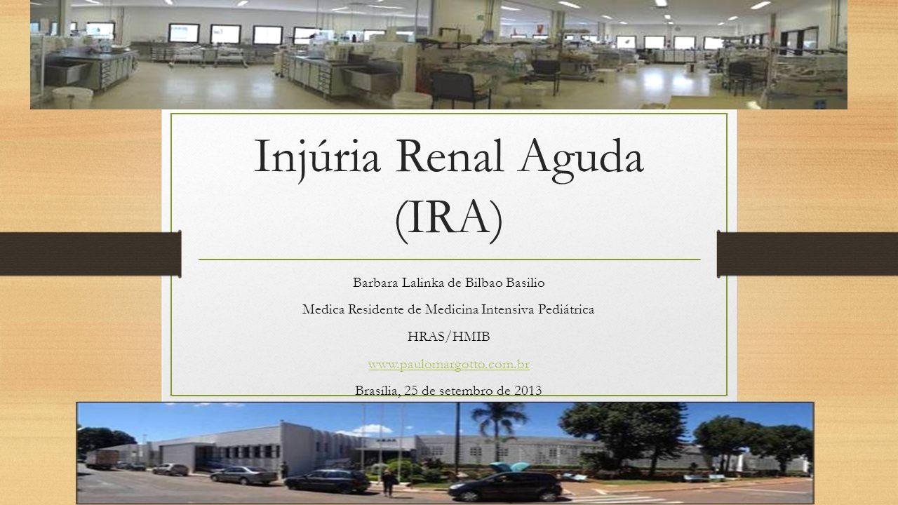 Injúria Renal Aguda (IRA) Barbara Lalinka de Bilbao Basilio Medica Residente de Medicina Intensiva Pediátrica HRAS/HMIB www.paulomargotto.com.br Brasí