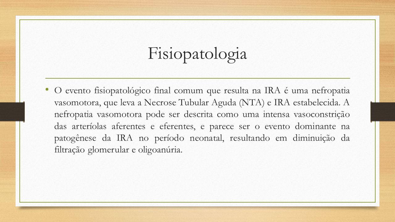Fisiopatologia O evento fisiopatológico final comum que resulta na IRA é uma nefropatia vasomotora, que leva a Necrose Tubular Aguda (NTA) e IRA estab