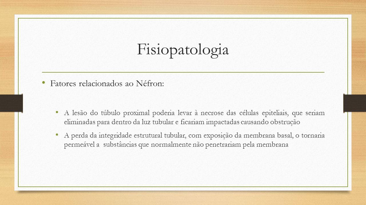 Fisiopatologia Fatores relacionados ao Néfron: A lesão do túbulo proximal poderia levar à necrose das células epiteliais, que seriam eliminadas para d
