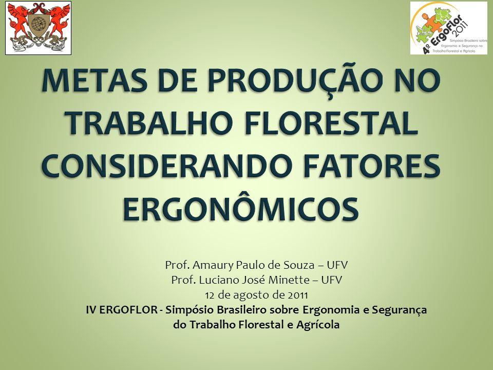 Prof. Amaury Paulo de Souza – UFV Prof. Luciano José Minette – UFV 12 de agosto de 2011 IV ERGOFLOR - Simpósio Brasileiro sobre Ergonomia e Segurança