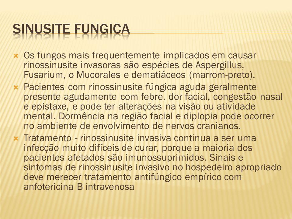 Os fungos mais frequentemente implicados em causar rinossinusite invasoras são espécies de Aspergillus, Fusarium, o Mucorales e dematiáceos (marrom-pr