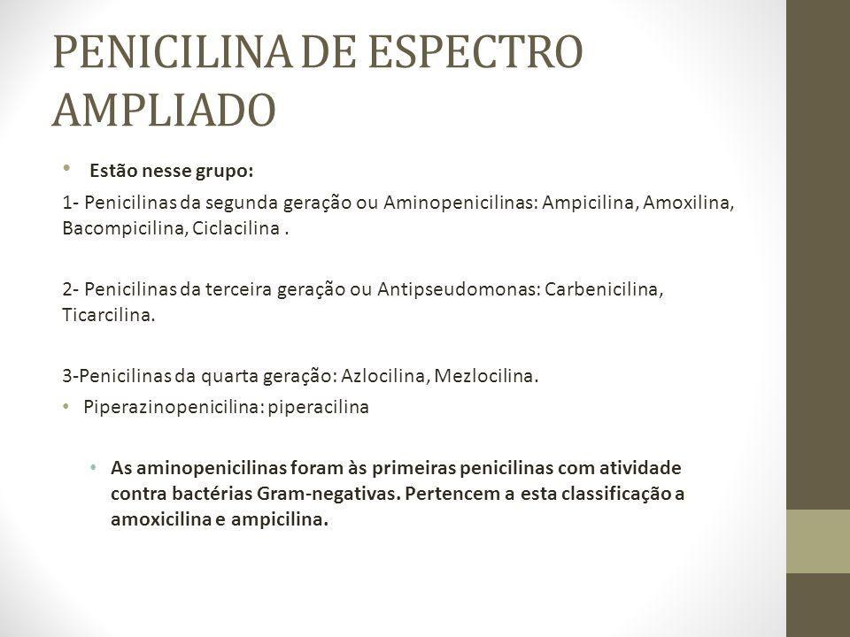 AMPICILINA A ampicilina é uma penicilina de amplo espectro, resistente à ação do suco gástrico, porém sensíveis às beta-lactamases.