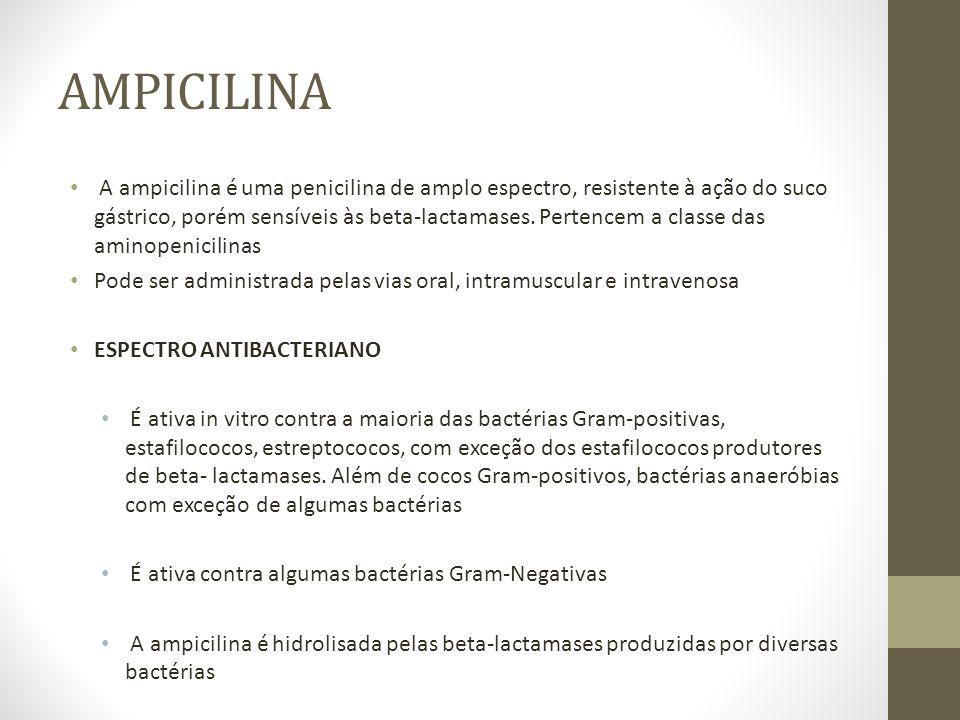 AMPICILINA INDICAÇÕES É bactericida, possui elevado índice terapêutico.
