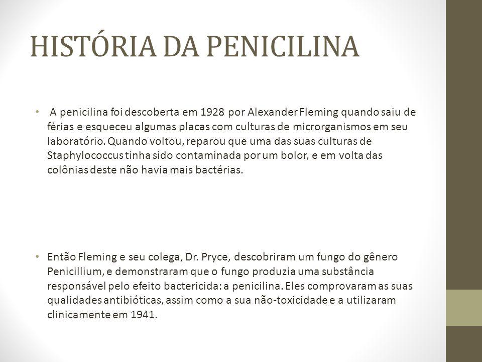 A penicilina foi descoberta em 1928 por Alexander Fleming quando saiu de férias e esqueceu algumas placas com culturas de microrganismos em seu laboratório.