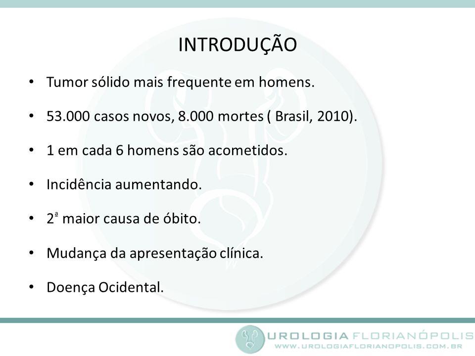 INTRODUÇÃO Tumor sólido mais frequente em homens.53.000 casos novos, 8.000 mortes ( Brasil, 2010).