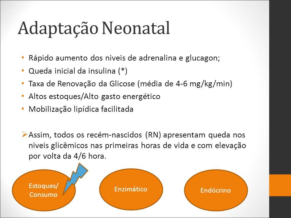 Adaptação Neonatal Rápido aumento dos niveis de adrenalina e glucagon; Queda inicial da insulina (*) Taxa de Renovação da Glicose (média de 4-6 mg/kg/