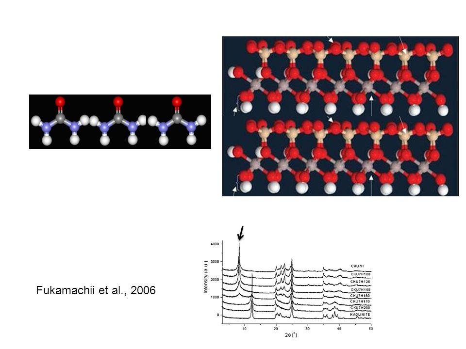 Fukamachii et al., 2006