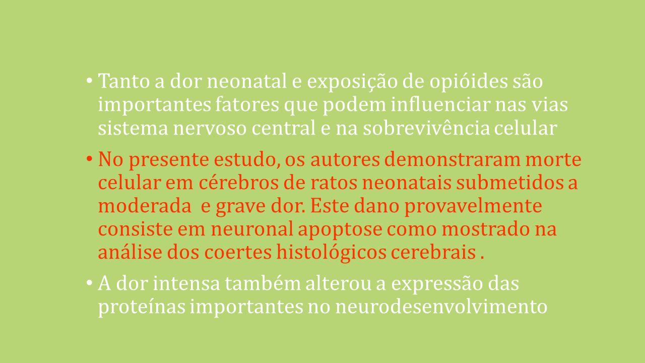 Tanto a dor neonatal e exposição de opióides são importantes fatores que podem influenciar nas vias sistema nervoso central e na sobrevivência celular No presente estudo, os autores demonstraram morte celular em cérebros de ratos neonatais submetidos a moderada e grave dor.