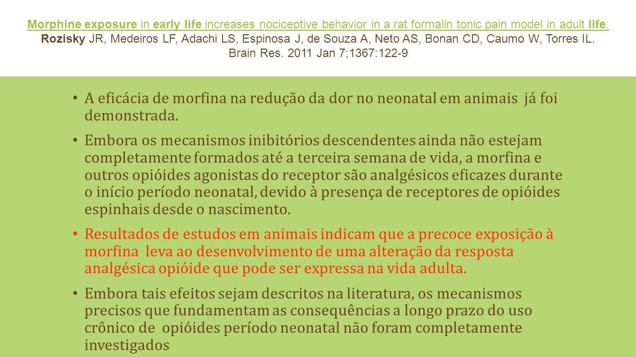 A eficácia de morfina na redução da dor no neonatal em animais já foi demonstrada.