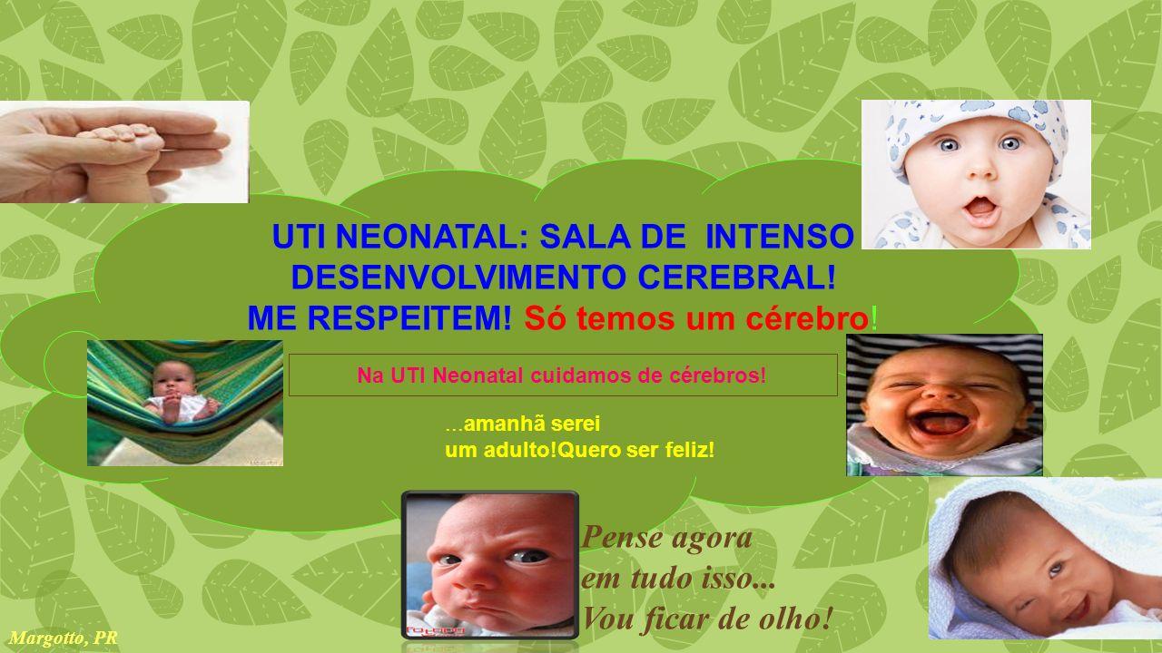 UTI NEONATAL: SALA DE INTENSO DESENVOLVIMENTO CEREBRAL.