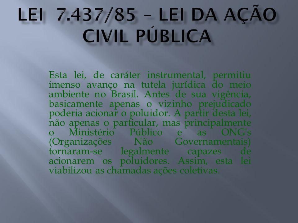 Esta lei, de caráter instrumental, permitiu imenso avanço na tutela jurídica do meio ambiente no Brasil. Antes de sua vigência, basicamente apenas o v