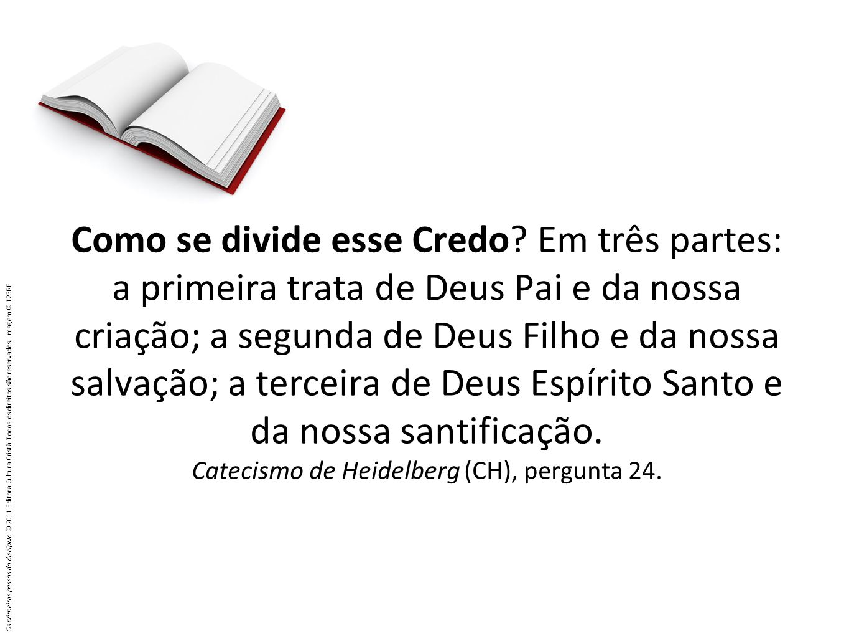 Como se divide esse Credo? Em três partes: a primeira trata de Deus Pai e da nossa criação; a segunda de Deus Filho e da nossa salvação; a terceira de
