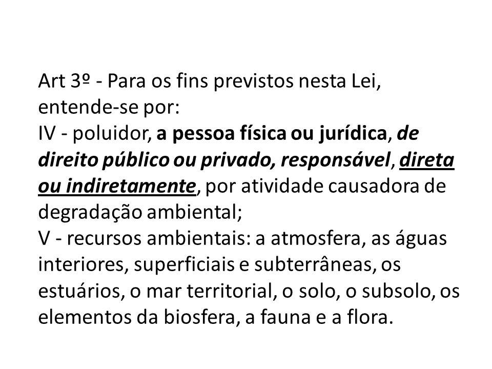 Art 3º - Para os fins previstos nesta Lei, entende-se por: IV - poluidor, a pessoa física ou jurídica, de direito público ou privado, responsável, dir