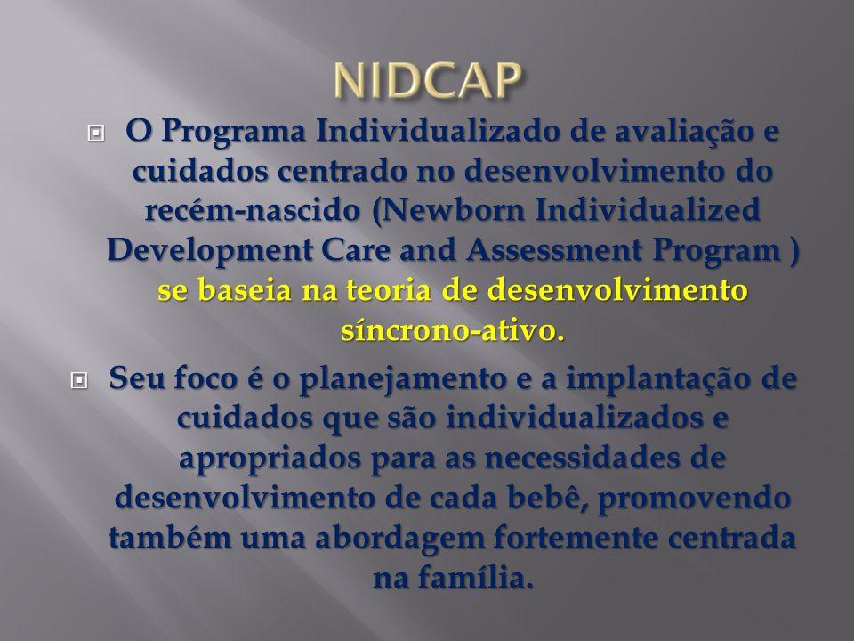O Programa Individualizado de avaliação e cuidados centrado no desenvolvimento do recém-nascido (Newborn Individualized Development Care and Assessmen