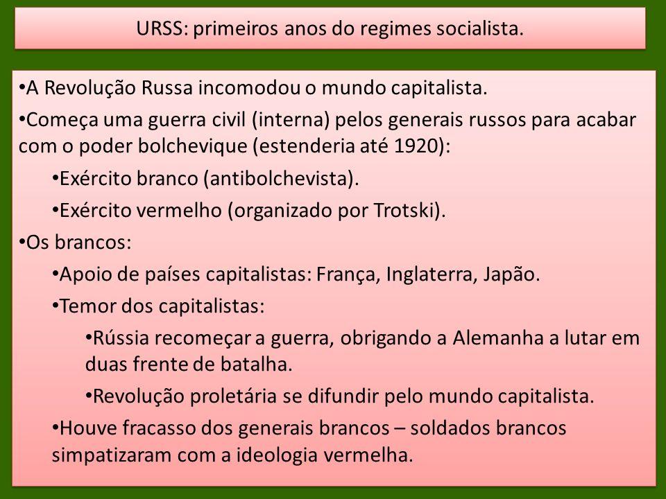 A Revolução Russa incomodou o mundo capitalista. Começa uma guerra civil (interna) pelos generais russos para acabar com o poder bolchevique (estender