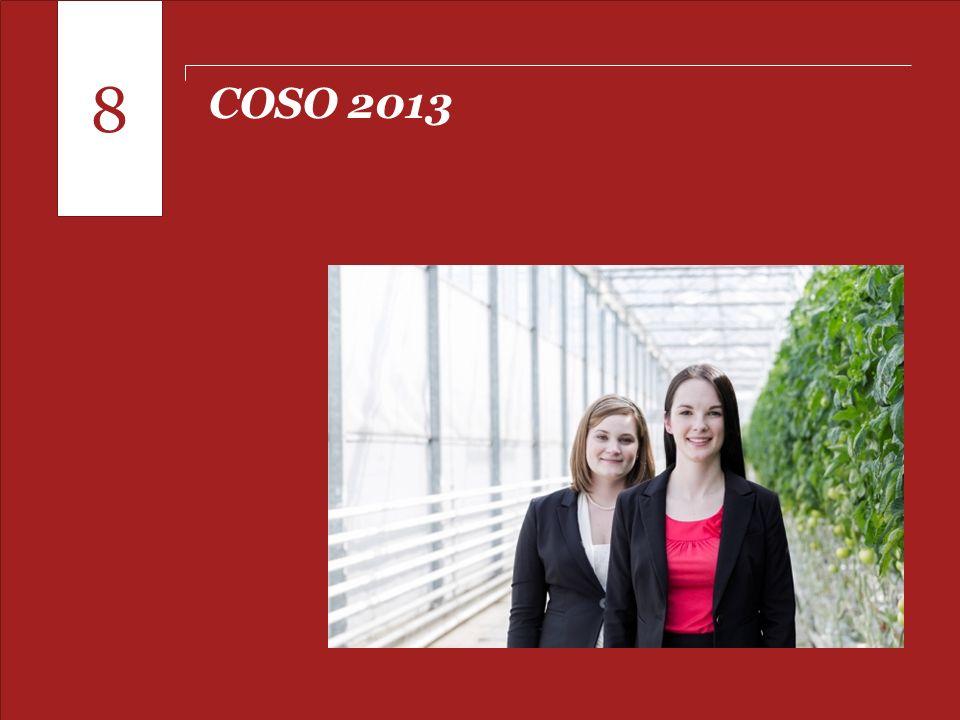 Pontos para o fechamento de 2013 COSO 2013 8