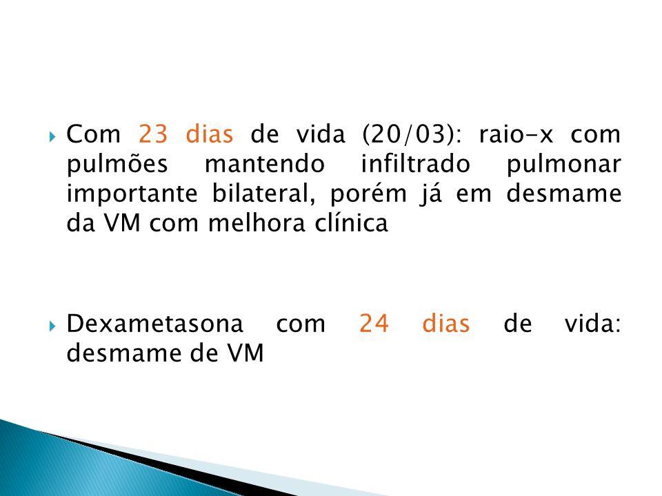 Com 23 dias de vida (20/03): raio-x com pulmões mantendo infiltrado pulmonar importante bilateral, porém já em desmame da VM com melhora clínica Dexametasona com 24 dias de vida: desmame de VM