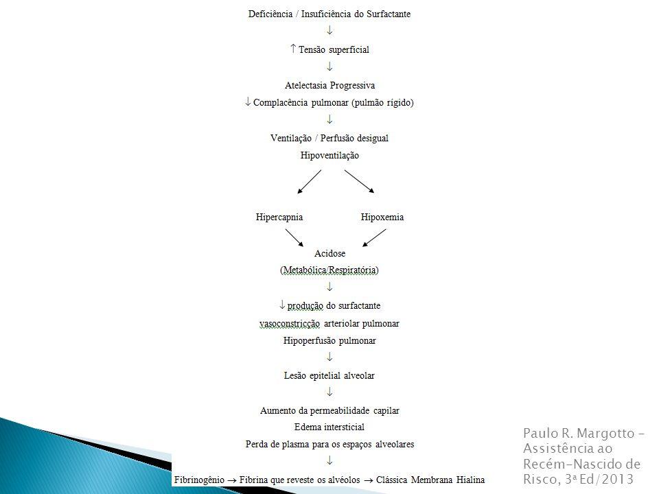 Paulo R. Margotto - Assistência ao Recém-Nascido de Risco, 3 a Ed/2013