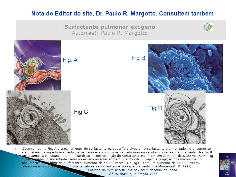 Surfactante pulmonar ex ó geno Autor(es): Paulo R. Margotto Nota do Editor do site, Dr. Paulo R. Margotto. Consultem também Fig. A Fig B Fig C Fig.D O