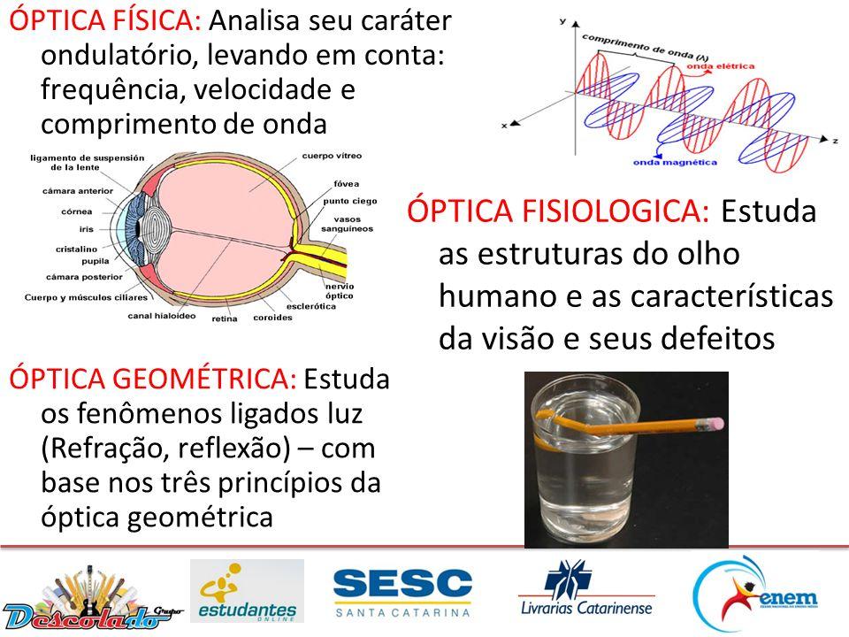 ÓPTICA FÍSICA: Analisa seu caráter ondulatório, levando em conta: frequência, velocidade e comprimento de onda ÓPTICA FISIOLOGICA: Estuda as estrutura