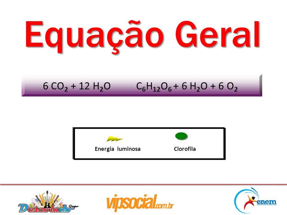 Equação Geral ClorofilaEnergia luminosa 6 CO 2 + 12 H 2 O C 6 H 12 O 6 + 6 H 2 O + 6 O 2