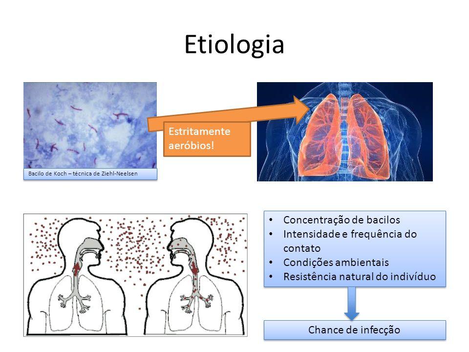 Etiologia Bacilo de Koch – técnica de Ziehl-Neelsen Estritamente aeróbios! Concentração de bacilos Intensidade e frequência do contato Condições ambie