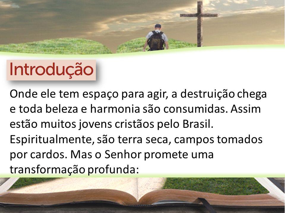 Onde ele tem espaço para agir, a destruição chega e toda beleza e harmonia são consumidas. Assim estão muitos jovens cristãos pelo Brasil. Espiritualm
