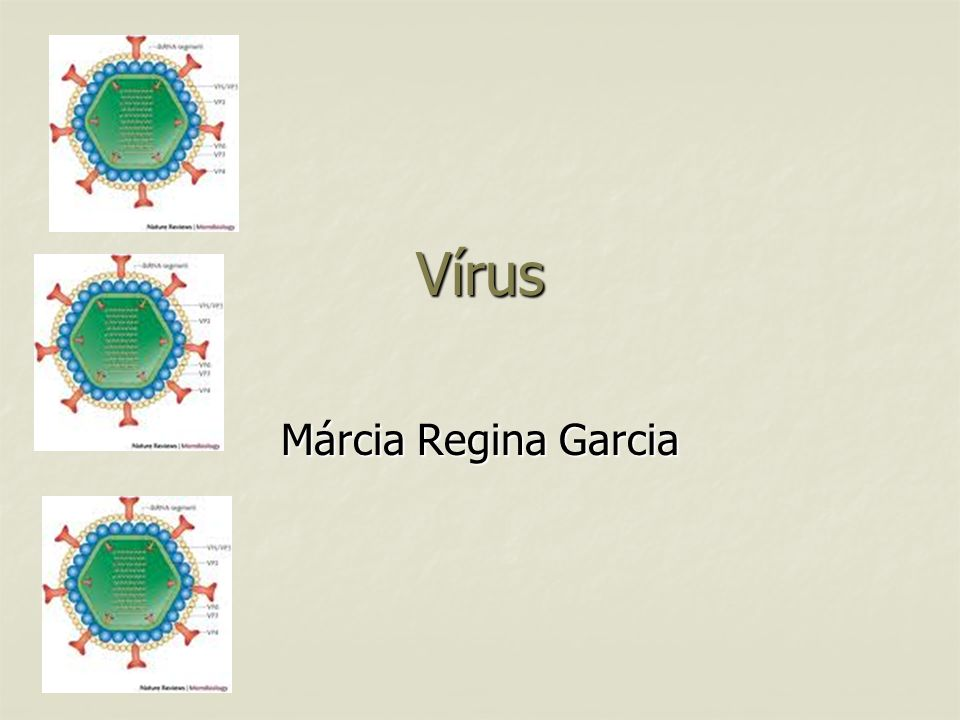 Vírus Márcia Regina Garcia