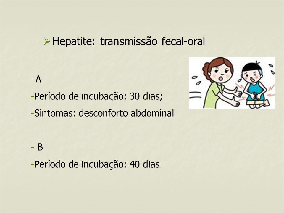 Hepatite: transmissão fecal-oral - A -Período de incubação: 30 dias; -Sintomas: desconforto abdominal - B -Período de incubação: 40 dias