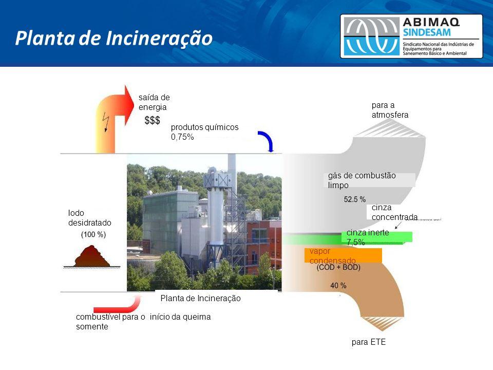 saída de energia lodo desidratado produtos químicos 0,75% para a atmosfera gás de combustão limpo cinza concentrada vapor condensado cinza inerte 7,5%