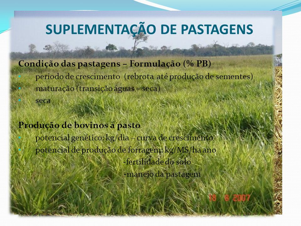 SUPLEMENTAÇÃO DE PASTAGENS Condição das pastagens – Formulação (% PB) período de crescimento (rebrota até produção de sementes) maturação (transição á