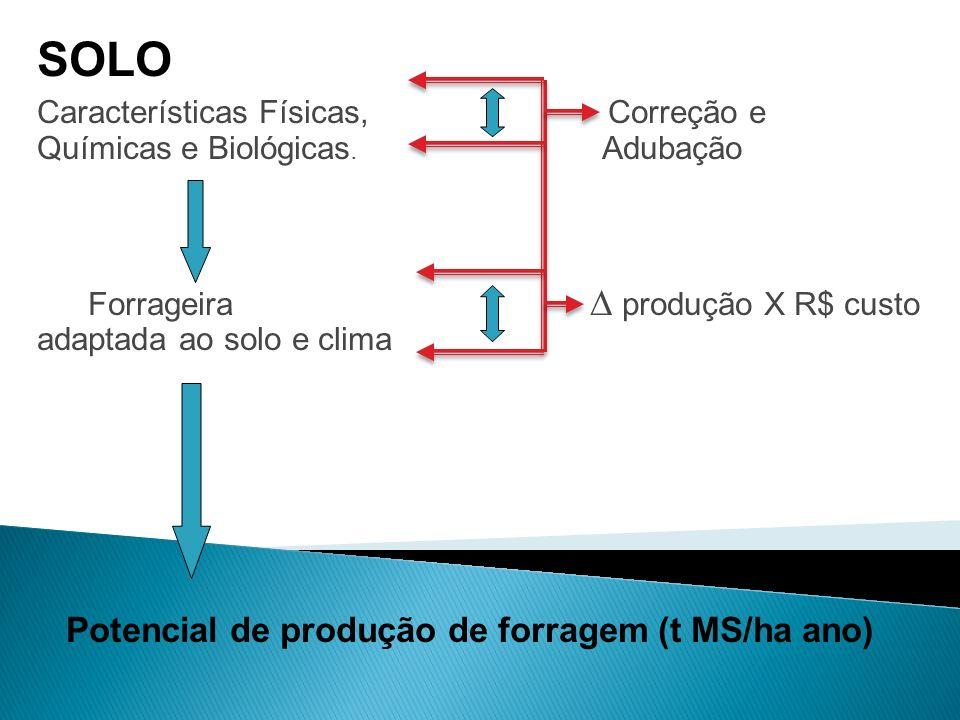 SOLO Características Físicas, Correção e Químicas e Biológicas. Adubação Forrageira produção X R$ custo adaptada ao solo e clima Potencial de produção