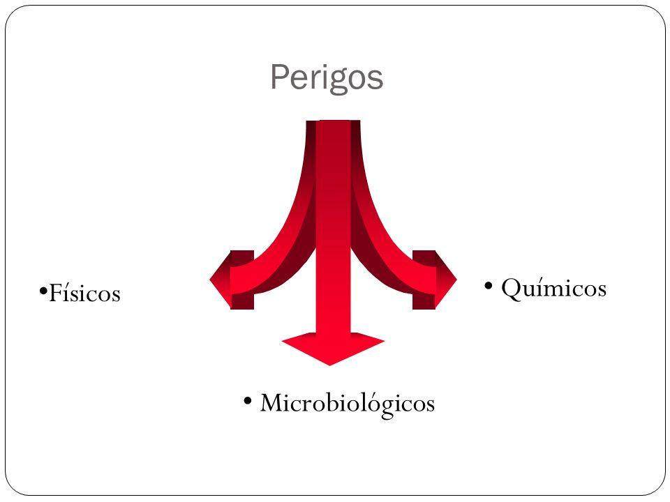 Perigos Físicos Microbiológicos Químicos