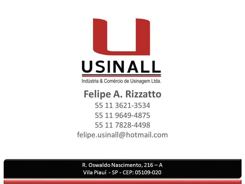 Felipe A.Rizzatto 55 11 3621-3534 55 11 9649-4875 55 11 7828-4498 felipe.usinall@hotmail.com R.