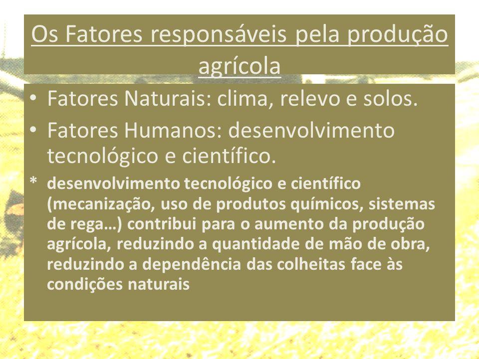 Os Fatores responsáveis pela produção agrícola Fatores Naturais: clima, relevo e solos. Fatores Humanos: desenvolvimento tecnológico e científico. * d