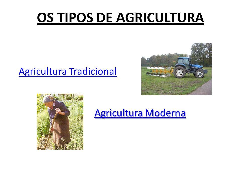 OS TIPOS DE AGRICULTURA Agricultura Tradicional Agricultura Moderna Agricultura Moderna