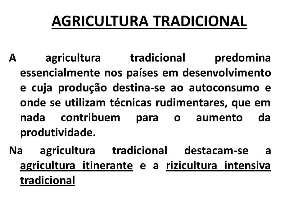 AGRICULTURA TRADICIONAL A agricultura tradicional predomina essencialmente nos países em desenvolvimento e cuja produção destina-se ao autoconsumo e o