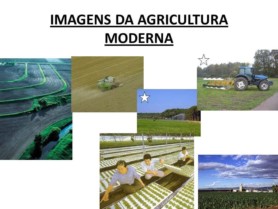 IMAGENS DA AGRICULTURA MODERNA