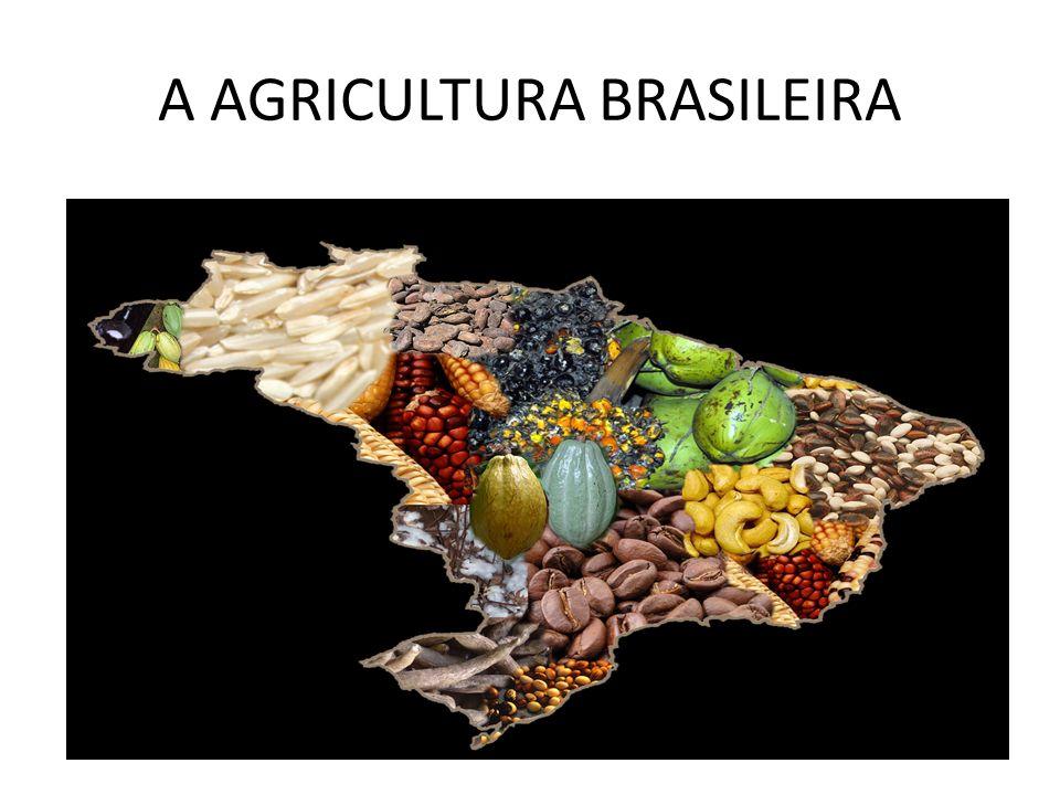 A AGRICULTURA BRASILEIRA
