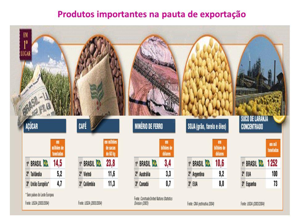 Produtos importantes na pauta de exportação