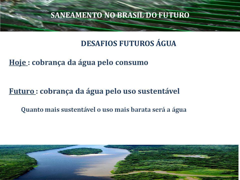 Hoje : cobrança da água pelo consumo Futuro : cobrança da água pelo uso sustentável Quanto mais sustentável o uso mais barata será a água DESAFIOS FUT