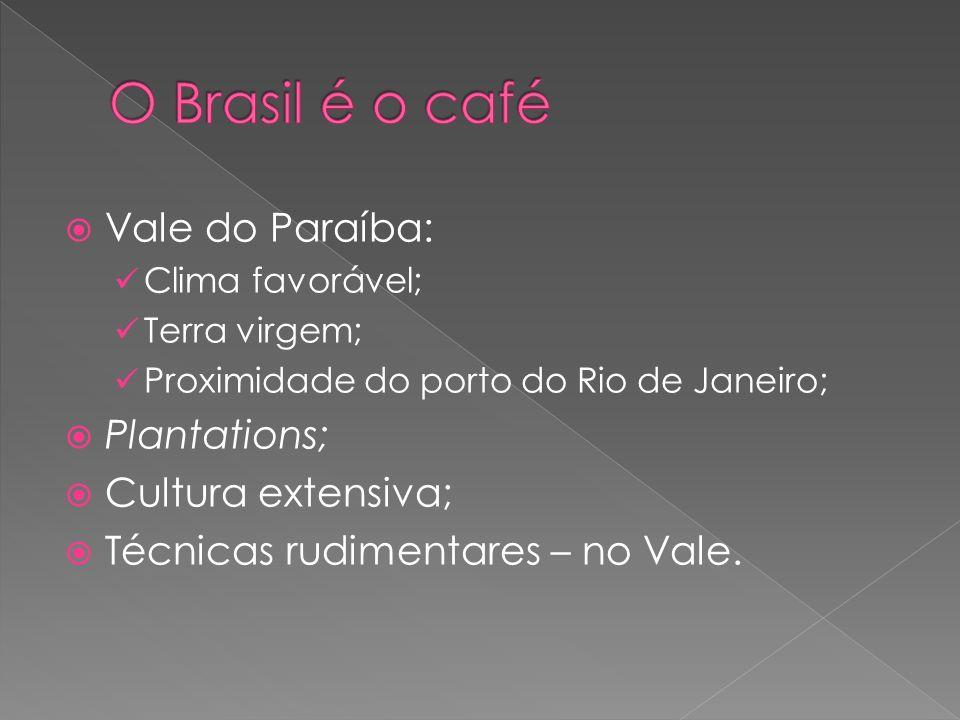 Vale do Paraíba: Clima favorável; Terra virgem; Proximidade do porto do Rio de Janeiro; Plantations; Cultura extensiva; Técnicas rudimentares – no Vale.