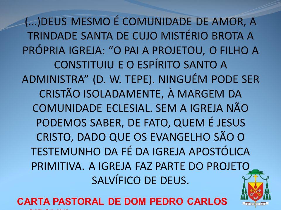 CARTA PASTORAL DE DOM PEDRO CARLOS CIPOLINI (...)DEUS MESMO É COMUNIDADE DE AMOR, A TRINDADE SANTA DE CUJO MISTÉRIO BROTA A PRÓPRIA IGREJA: O PAI A PR