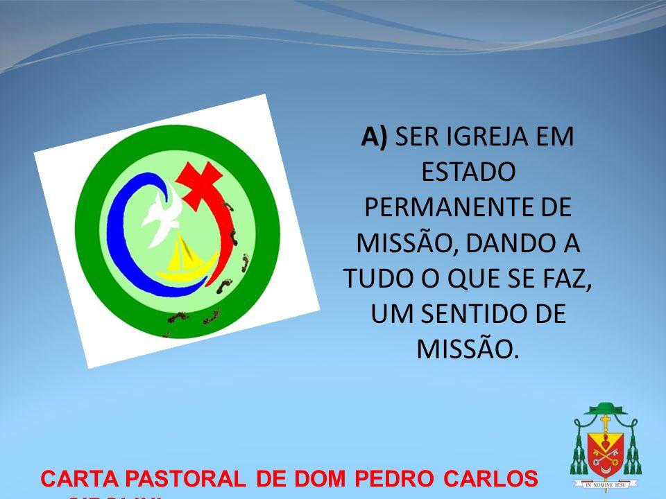 CARTA PASTORAL DE DOM PEDRO CARLOS CIPOLINI A) SER IGREJA EM ESTADO PERMANENTE DE MISSÃO, DANDO A TUDO O QUE SE FAZ, UM SENTIDO DE MISSÃO.