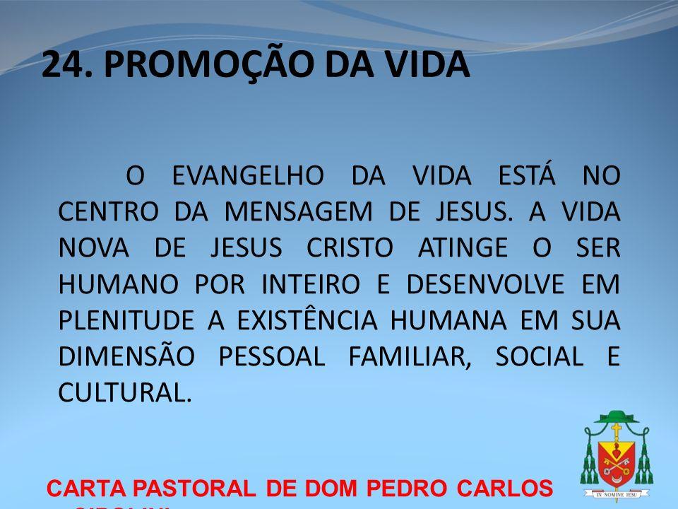 24. PROMOÇÃO DA VIDA CARTA PASTORAL DE DOM PEDRO CARLOS CIPOLINI O EVANGELHO DA VIDA ESTÁ NO CENTRO DA MENSAGEM DE JESUS. A VIDA NOVA DE JESUS CRISTO