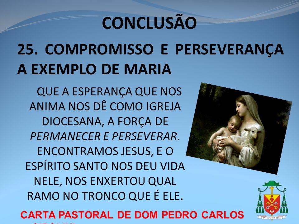 CONCLUSÃO CARTA PASTORAL DE DOM PEDRO CARLOS CIPOLINI 25. COMPROMISSO E PERSEVERANÇA A EXEMPLO DE MARIA QUE A ESPERANÇA QUE NOS ANIMA NOS DÊ COMO IGRE